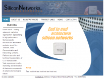 Silicon Networks